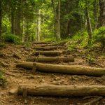 Jalan Sulit dan Memutar