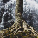 Menghadapi Penderitaan Tidak dengan Tawar Hati